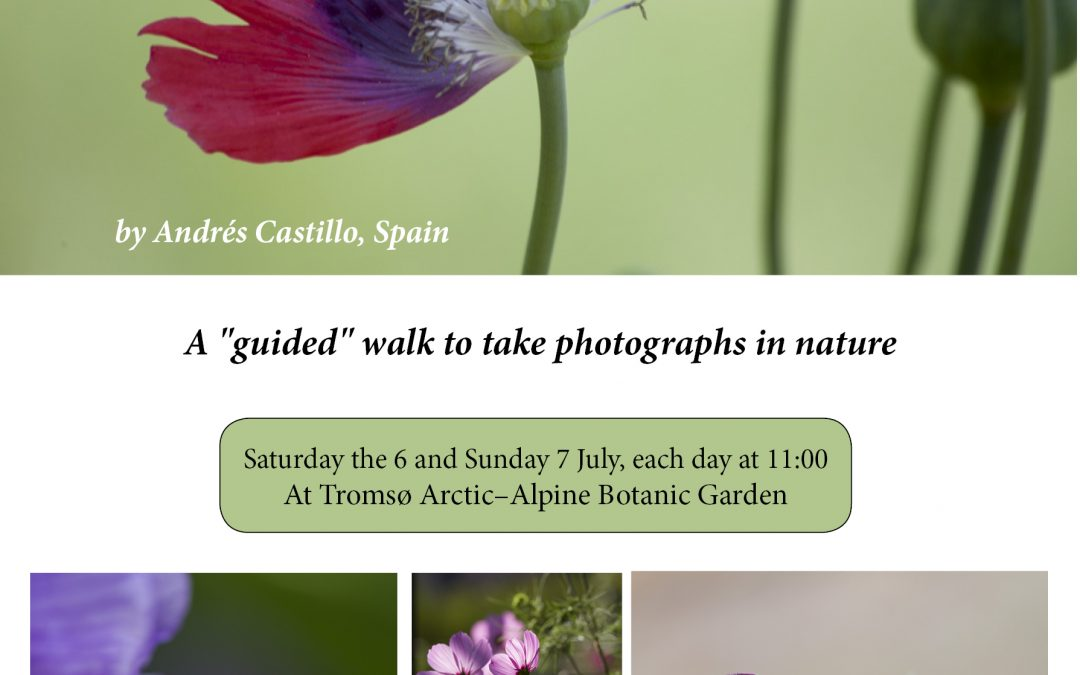 Plants and Landscape Photography Workshop, Norway